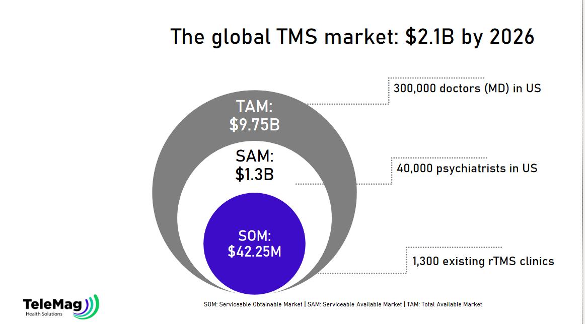 globas-tms-market